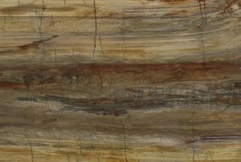 legno silicizzato